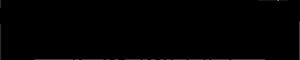 Bruun Stengade Logo 300px